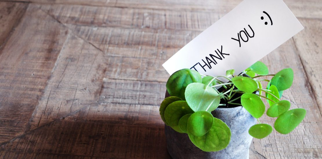Plant in pot on wood table with thank you sign