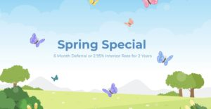 Spring Special AC Gibbon heating